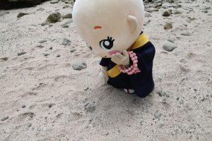 きらきらしているね~。五色砂(ごしきすな)って言われている不思議な砂だよ 誕生寺さんに、御守りとして頒布されているんだ~