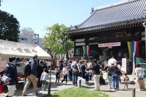 常圓寺の子供の花まつり (2)